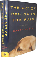 art-racing-rain-garth-stein